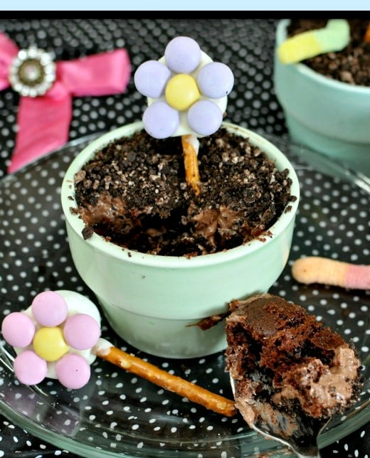 Flowers and Dirt Cake - Super cute for Easter, Mother's Day, and parties!