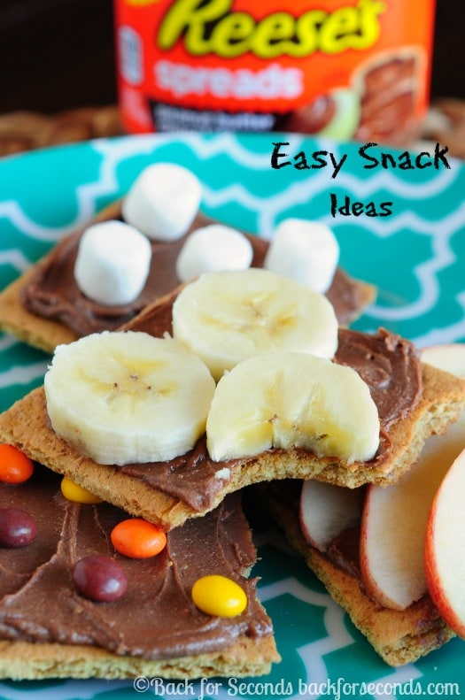 Easy No Bake Snack Ideas