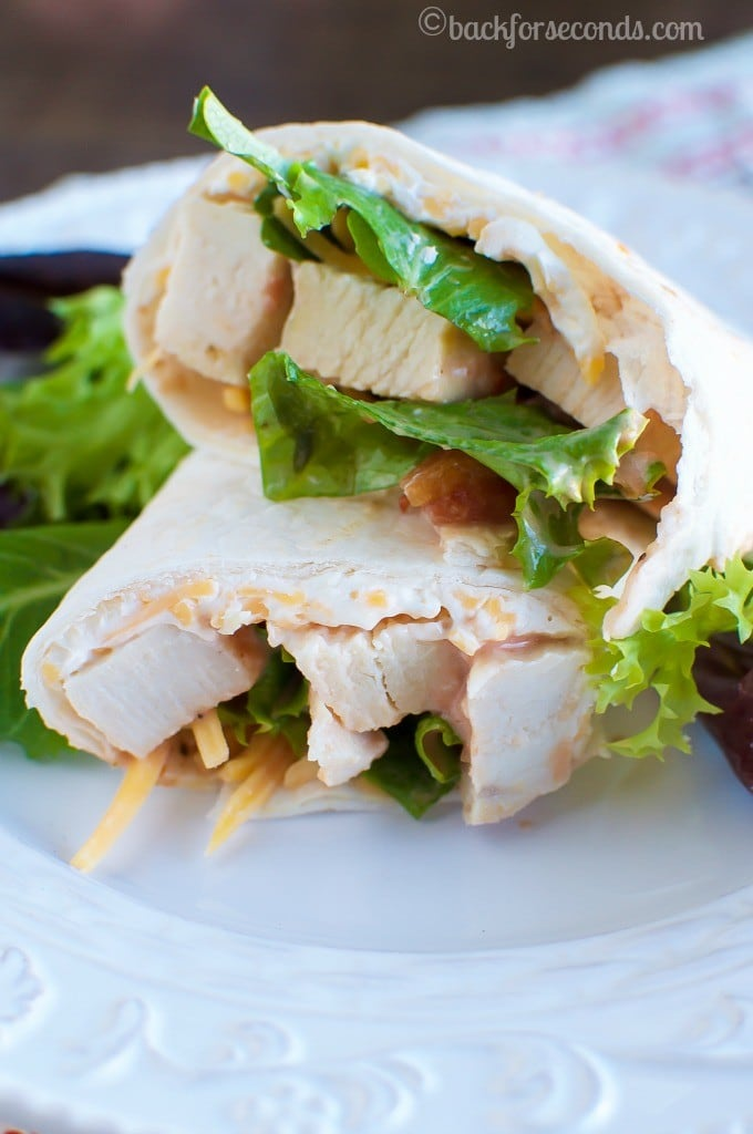 Creamy Chicken Tortilla Roll Ups